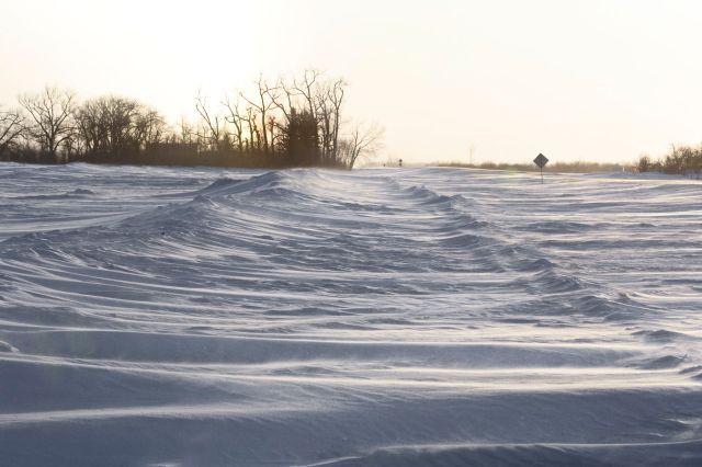 North Dakota - Cavalier County 2009