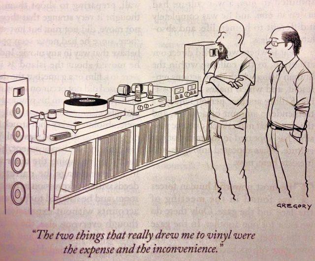 audio vinyl experience