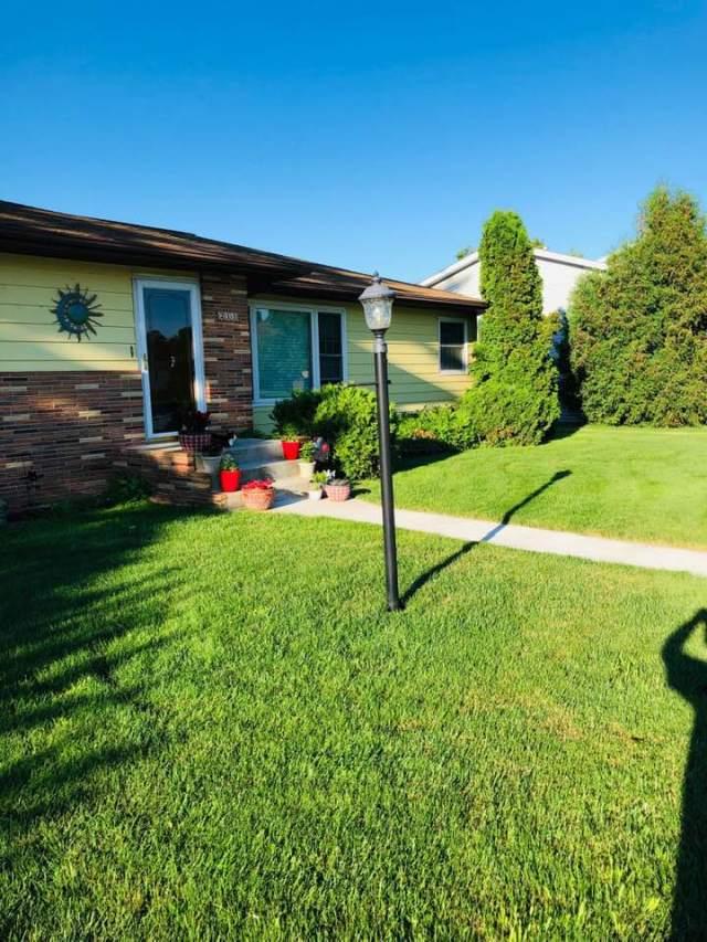 vivid lawn