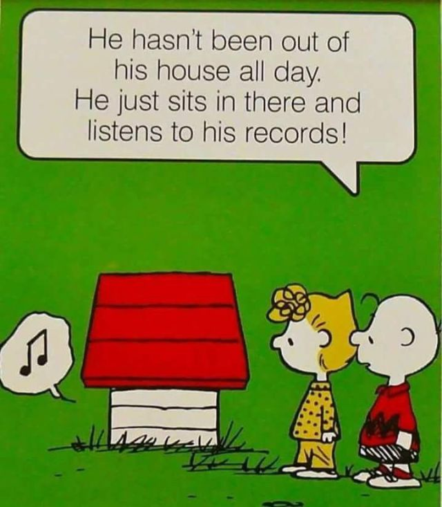 Peanuts - Snoopy playing records